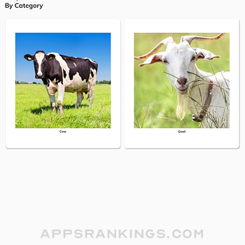 Agriazo Poultry Ipad Images