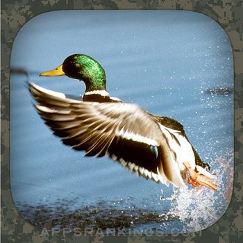 Duck Hunting Calls app reviews and download