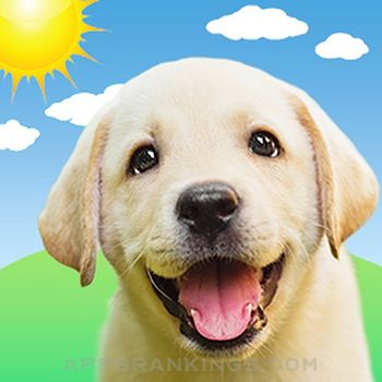 Weather Puppy Forecast + Radar app reviews and download