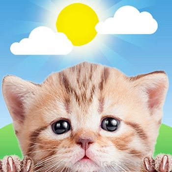 Weather Kitty: Weather + Radar app reviews and download